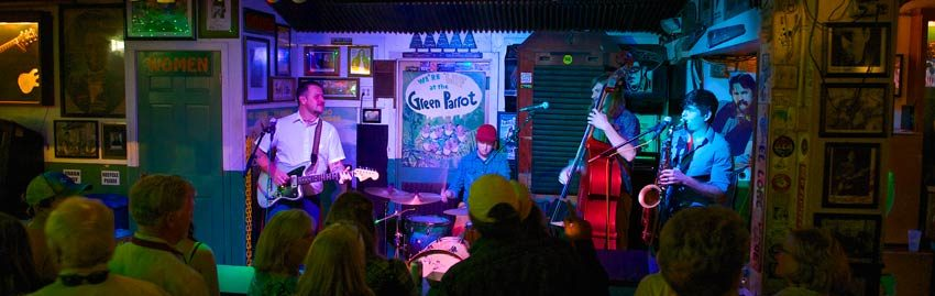 Live music on the Green Parrot stage