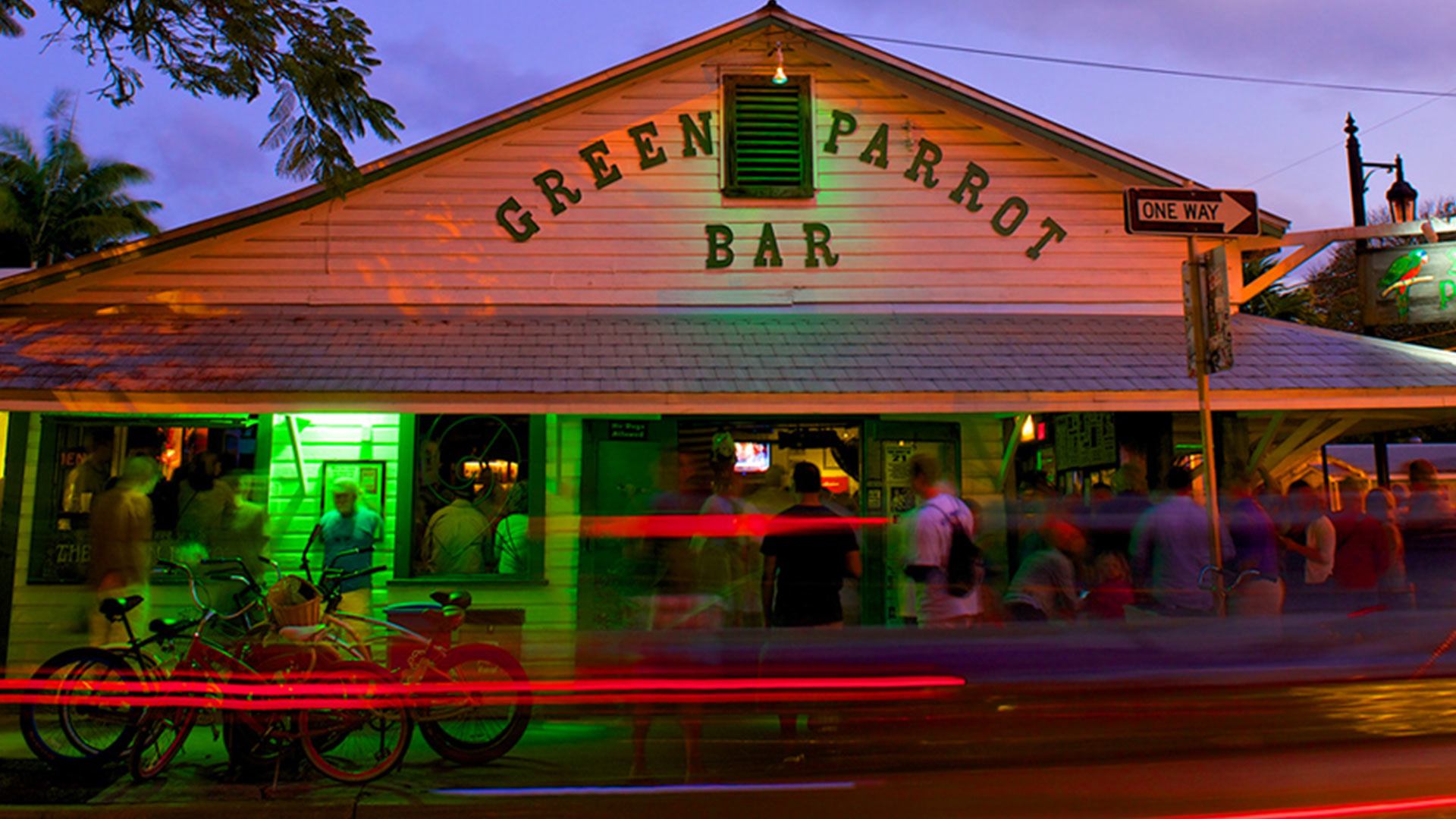 live music at green parrot in key west